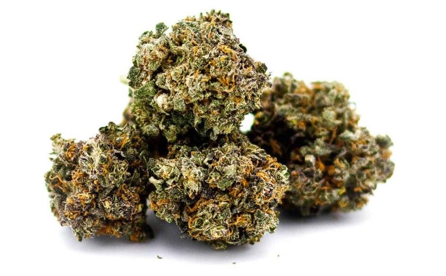 CBD kvety, CBD tráva, CBD šišky, CBD marihuana, CBD šúľky, konopné kvety