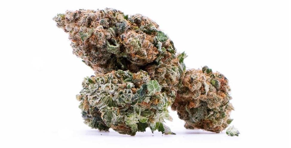 CBG kvety, CBG šišky, CBG tráva, CBG marihuana, CBG weed