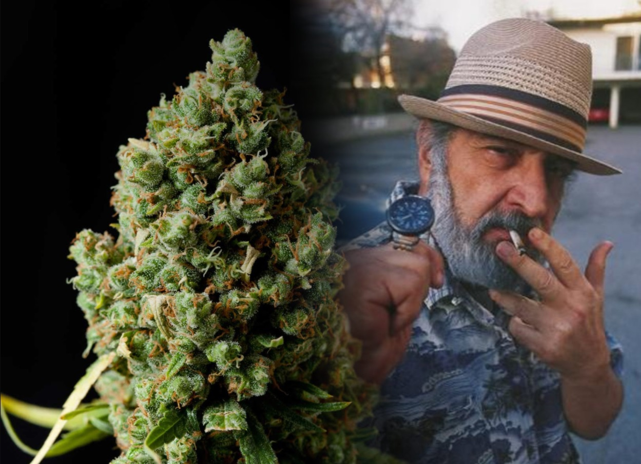 Jack Herer napomohol legalizácii CBD