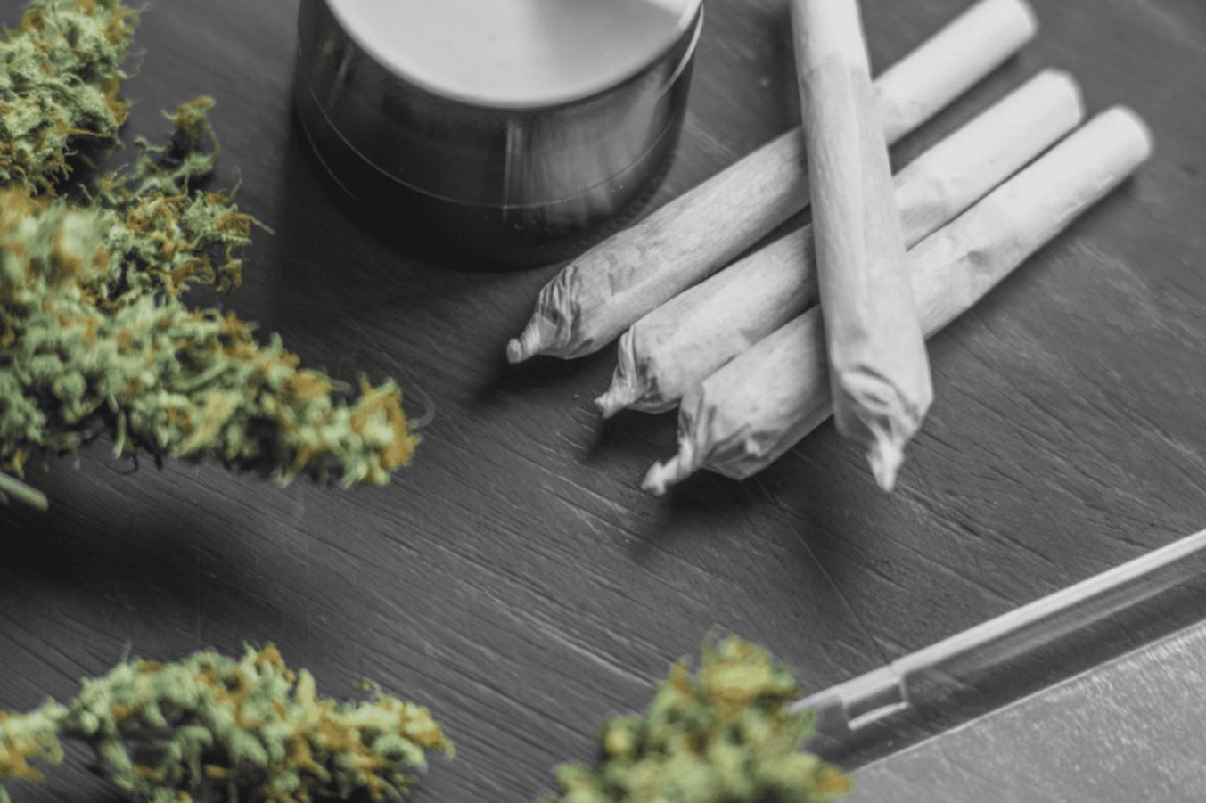 CBD jointy, CBD cigarety, CBD brko, CBD joint, CBD cigareta